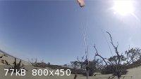 driftwood tease.jpg - 77kB